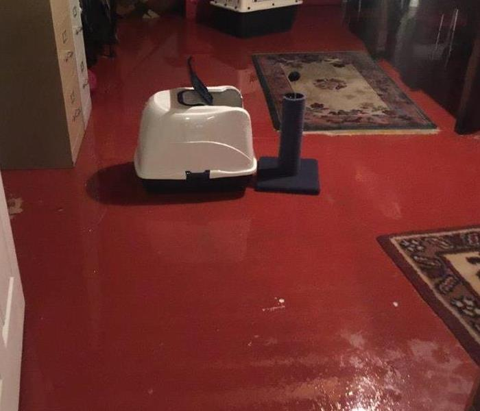 Water Damage We Specialize in Flooded Basement Cleanup and Restoration!