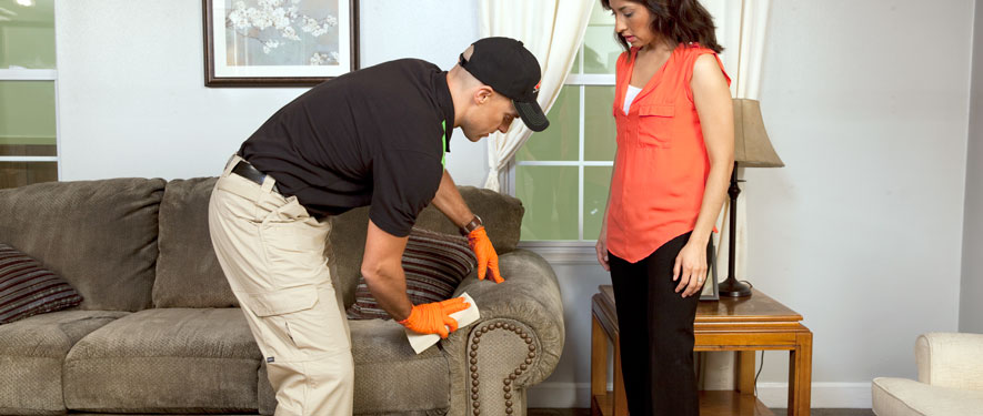 Elmhurst, IL carpet upholstery cleaning