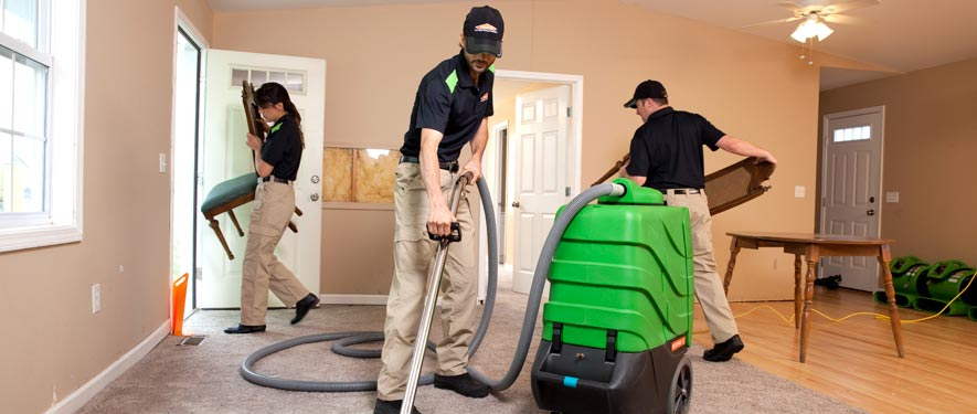 Elmhurst, IL cleaning services